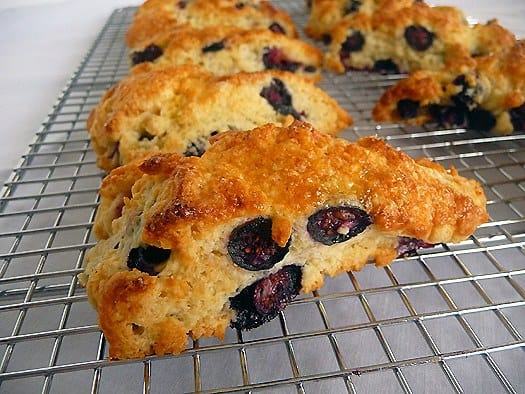Back > Gallery For > Blueberry Buttermilk Scones
