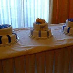psu-nasa-cakes-all-250