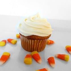 pumpkin-cupcakes-plain-250