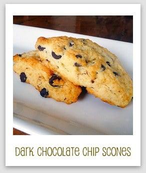 Dark Chocolate Chip Scones