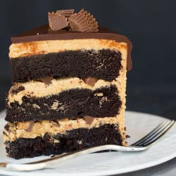 Top 10 List: Favorite Cake Recipes >> Peanut Butter Cup Overload Cake | browneyedbaker.com