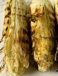 grilled-corn-1-250