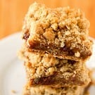 oatmeal-carmelita-bars-3-250