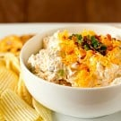 loaded-baked-potato-dip-1-250