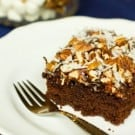mississippi-mud-cake-1-250