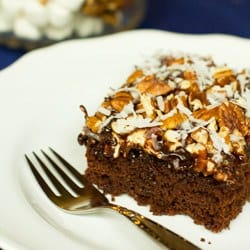 mississippi-mud-cake-1-250