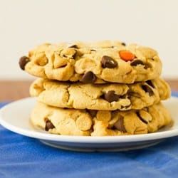 reeses-chocolate-chip-cookies-1-250