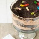 dirt-dessert-23-250
