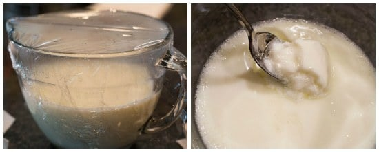 greek-yogurt-prep2