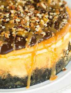 turtle-cheesecake-16-275