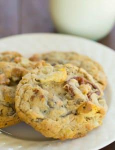 compost-cookies-3-275