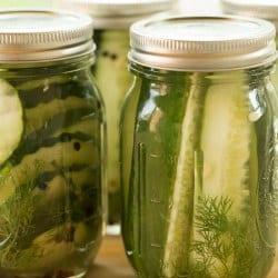 refrigerator-dill-pickles-22-250