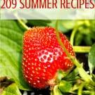 209 Best Summer Recipes | browneyedbaker.com