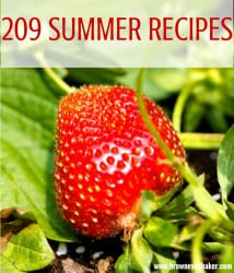 209 Best Summer Recipes | browneyedbaker.com
