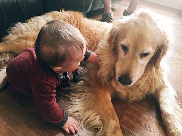 Joseph and Einstein having a serious talk.   browneyedbaker.com