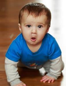 Joseph David - Almost 8.5 months old! | browneyedbaker.com