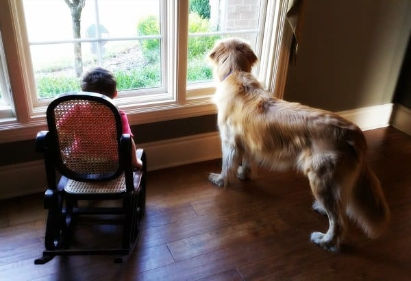 Joseph and Duke keeping an eye on the front yard :)
