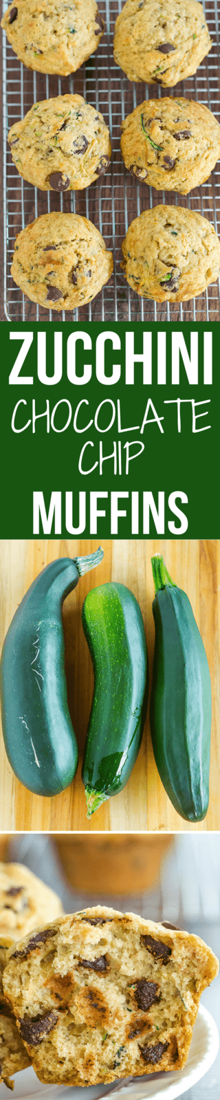 Zucchini-Chocolate Chip Muffins - A super quick and easy recipe, insanely moist, and a great way to use up the late summer zucchini bounty!