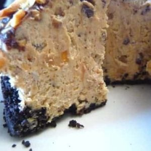 Chocolate peanut butter torte with a slice removed showing the texture.