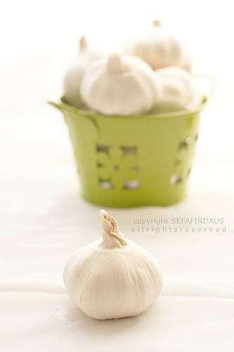 Garlic @ Food is Love by Sefa
