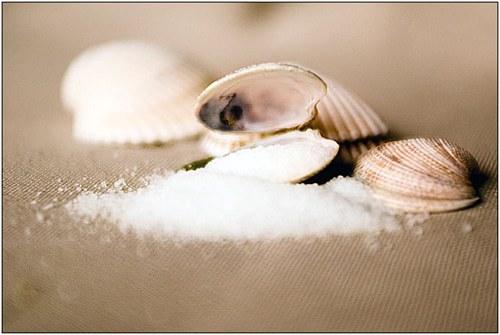 Sea Shells and salt