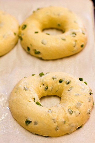 Jalapeño Cheddar Bagels Recipe