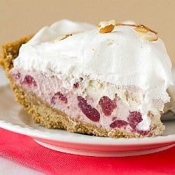 Cranberry Ice Cream Pie