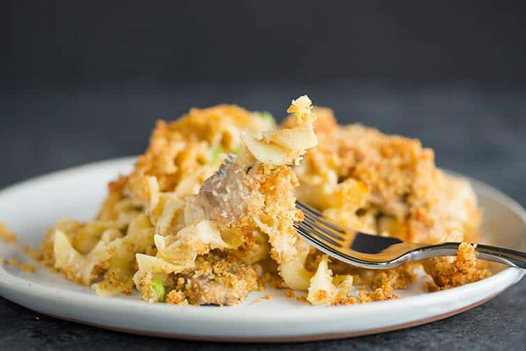 A plate of turkey tetrazzini with the fork picking up noodles and a mushroom.