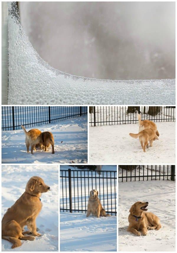 cold!-jan2014-600