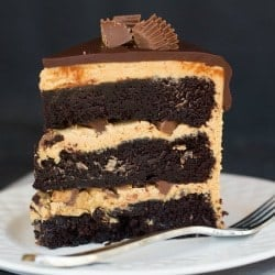 Chocolate-Peanut Butter Cup Cake