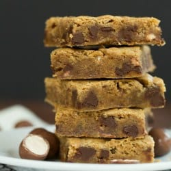 malted-chocolate-chip-blondies-2-250