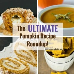 The ULTIMATE Pumpkin Recipe Roundup - Awesome pumpkin recipes including breakfasts, savory dishes, desserts and even a dog treat recipe! | https://www.browneyedbaker.com/pumpkin-recipes/