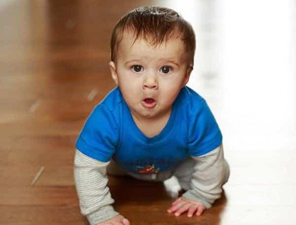 Joseph David - Almost 8.5 months old!   browneyedbaker.com