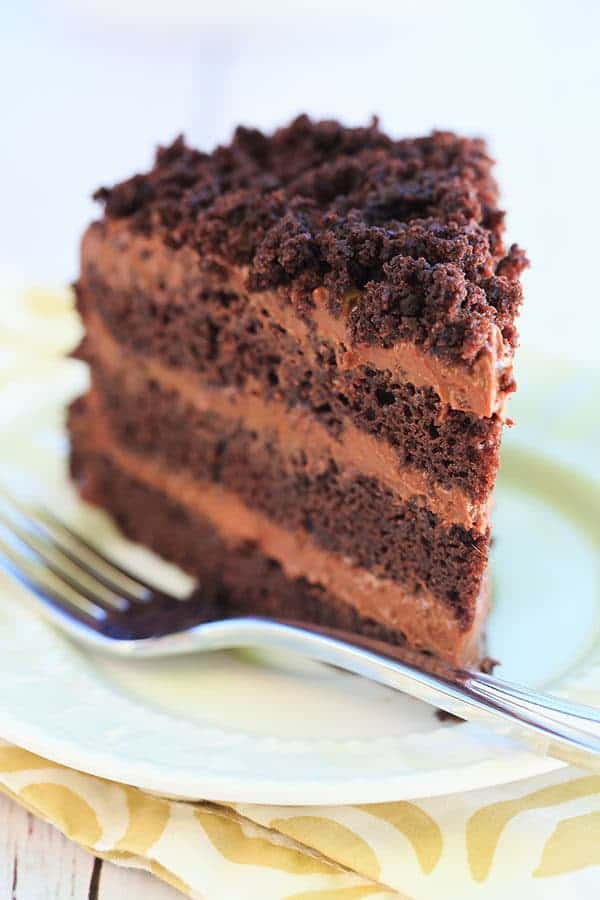 Chocolate Blackout Cake - Filled and frosted with a rich chocolate pudding and coated in cake crumbs! | browneyedbaker.com