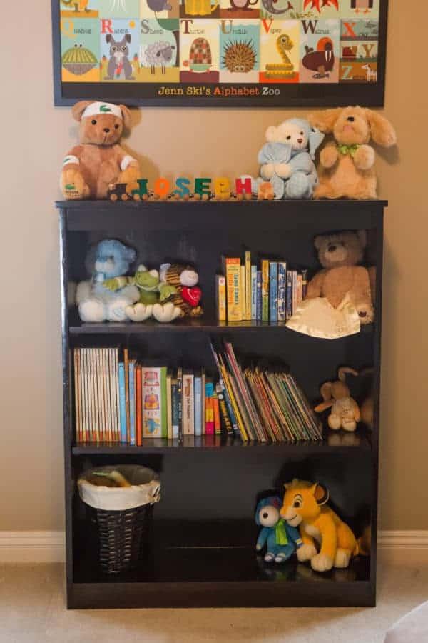 bookshelf-2-2