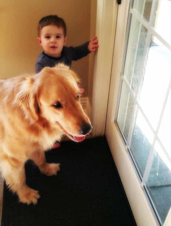 Joseph trying to let Duke out