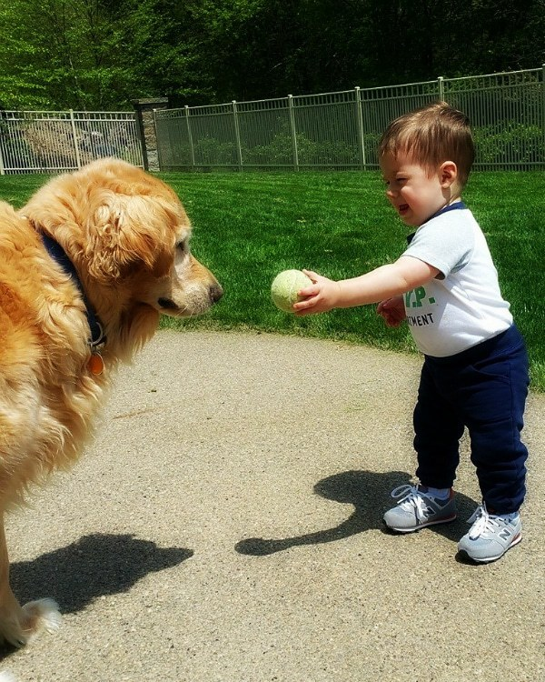 Einstein and Joseph playing catch with the tennis ball :)