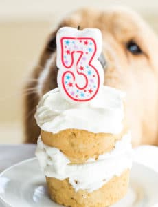 Miraculous Dog Birthday Cake Brown Eyed Baker Personalised Birthday Cards Veneteletsinfo