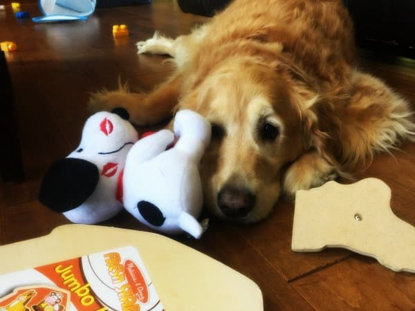 Einstein surrounded by toddler toys