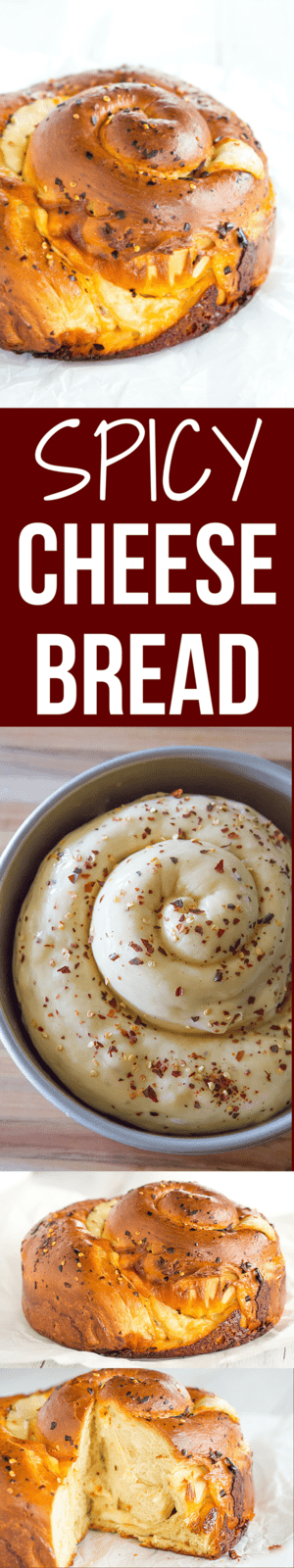 Spicy Cheese Bread - This recipe makes a huge loaf of a rich brioche-like bread loaded with provolone and Monterey Jack cheeses, and speckled with crushed red pepper flakes. | browneyedbaker.com