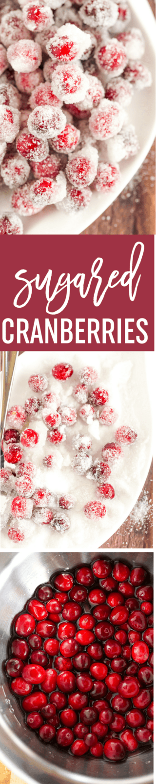 An easy recipe for Sugared Cranberries - a beautiful, sparkly garnish for your holiday desserts and cocktails! | browneyedbaker.com