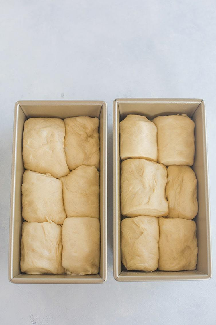Milk bread dough tucked into two loaf pans.