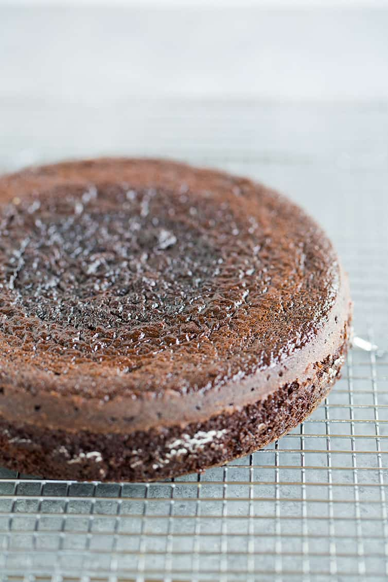 A layer of chocolate cake on a cooling rack.