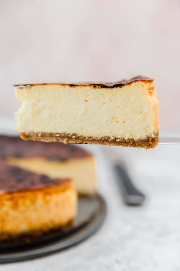 A slice of cheesecake on a pie server, being lifted out of the cheesecake.
