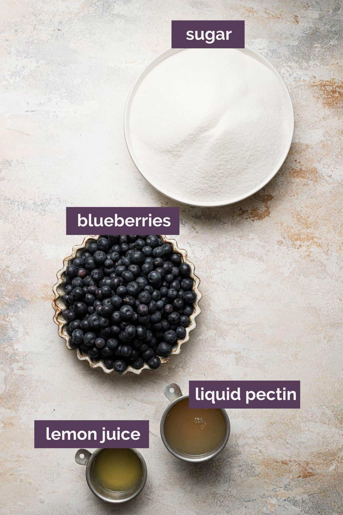 Ingredients for blueberry jam labeled with a purple label telling what each ingredient is.
